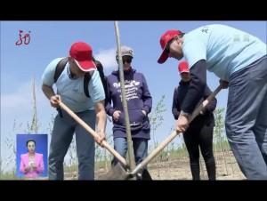 龙广植树节 种树为家乡