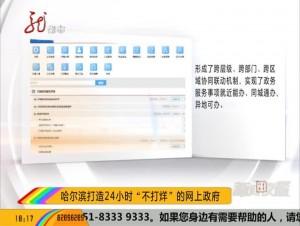 """哈尔滨打造24小时""""不打烊""""的网上政府"""