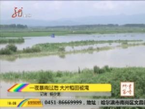 一夜暴雨过后 大片稻田被淹