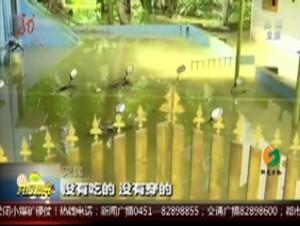 印度:洪灾泛滥 整栋楼房顺坡滑下