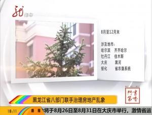 黑龙江省八部门联手治理房地产乱象