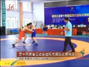 第十四届省运动会国际式摔跤比赛结束