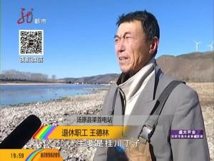 汤原:增殖放流见成效 大马哈鱼再现汤旺河