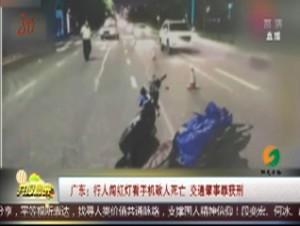 广东:行人闯红灯看手机致人死亡 交通肇事罪获刑