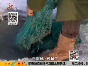 青花湖趣味无限 冰下捕蟹等你体验