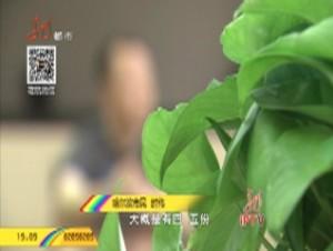 春节特别节目:扫黑进行时《0802骗局!以贷款的名义》