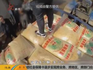 男子为牟利 制售假豆种