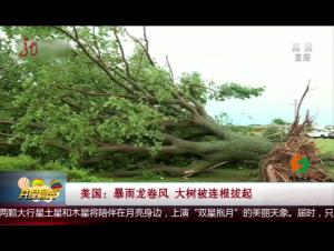 美国:暴雨龙卷风 大树被连根拔起