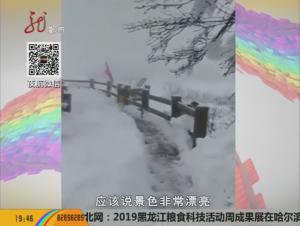 凤凰山持续降雪美如画