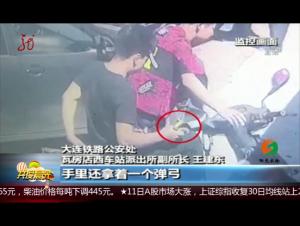 辽宁:弹弓打鸟击中高铁 男子被拘十日