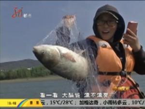 乌苏里江:稀有鱼类回来了
