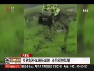 内蒙古:多辆车碾压草原 还拍视频炫耀