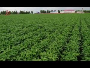 農業綜合改革激發新活力