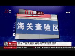哈尔滨:黑龙江省货物贸易进出口实现双增长