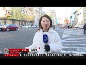 """哈尔滨市告别""""单双号"""""""