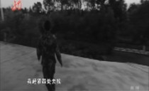 新华视点20170602