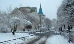 -34.6℃ 哈尔滨市低温再创今冬极限 未来将小幅升温重回-20℃以上
