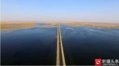 【云游新疆】鸟飞鱼跃水草丰 塔里木河生态重焕生机引客来