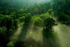 超skr的聪明旅行家 7天游遍黑龙江大森林里的小夏天