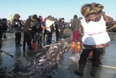 冬季到龙江来冬捕!