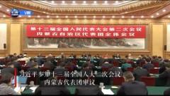 【独家V观】习近平参加内蒙古代表团审议