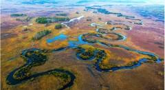 每日一景|黑龙江大兴安岭:嫩江源南瓮河湿地
