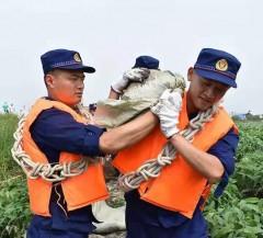 应急救援 | 强降雨袭击村庄 黑河森林消防支队紧急救援