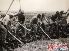 【新時代·幸福美麗新邊疆】新疆生產建設兵團:讓忠誠的種子在這片土地上世代相傳
