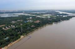 全力应对!松花江第1号洪水预计23日出现洪峰!已发布黄色预警