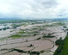 【视频】鸡东:党员干部群众奋战穆棱河抗洪一线