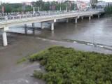 【视频】鸡西:穆棱河洪峰顺利通过主城区!