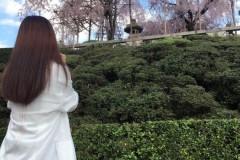 赵丽颖春日赏樱侧颜杀 网友:大片级的游客照