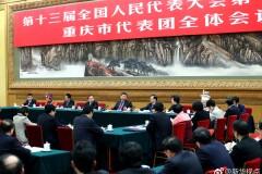 习近平:长江经济带开发要科学、绿色、可持续