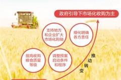 今年小麦稻谷怎么收?国家粮食局解读最低收购价