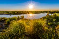 """年龄10万+!快来看看湿地里的岁月""""上神"""""""