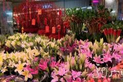 办年货、逛花市……龙江大地年味十足
