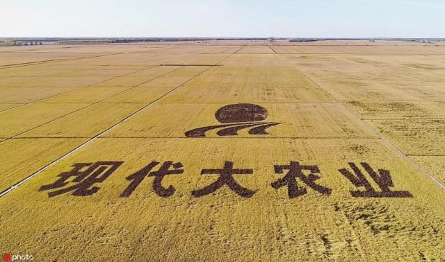 http://www.ddzzad.com/heilongjiangxinwen/254762.html