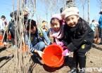 哈尔滨市民带孩子种植丁香树 体验劳动快乐