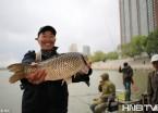 小丰满水库放水到哈尔滨 松花江水涨了大鱼来了