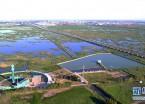 """""""城中湿地""""尽显北国绿意生机(组图)"""