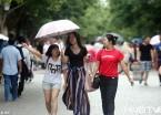 三伏天 哈尔滨市持续阴雨天气最高温只有26度