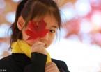 枫叶红了、桦叶黄了 哈尔滨大学校园现醉美金秋(组图)