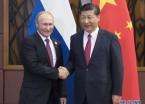 习近平会见俄罗斯总统普京