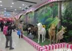 """哈尔滨一商场里建起了""""动物园"""" 引市民拍照(组图)"""