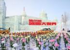 哈尔滨:冰雪大世界建设近尾声(组图)