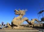 齐齐哈尔:扎龙保护区建起超大稻草龙  用掉两吨稻草(组图)