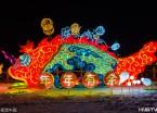 哈尔滨:长岭湖鱼灯节开幕 流光溢彩夜景美(组图)