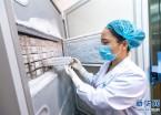 探访中科院武汉病毒研究所微生物菌毒种保藏中心