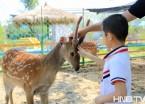 哈尔滨:百名小朋友约会珍稀小动物 欢乐迎六一 (组图)