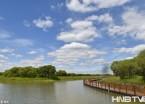 黑瞎子岛湿地公园风光如画 游客盛夏休闲避暑好去处(组图)